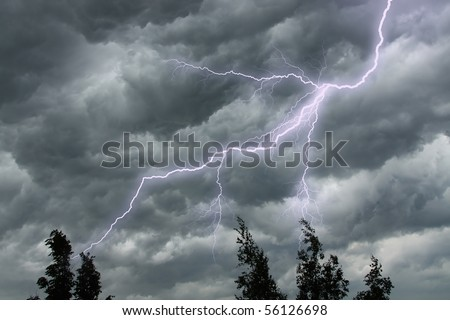 The lighting in dark stormy clouds and tree tops - stock photo