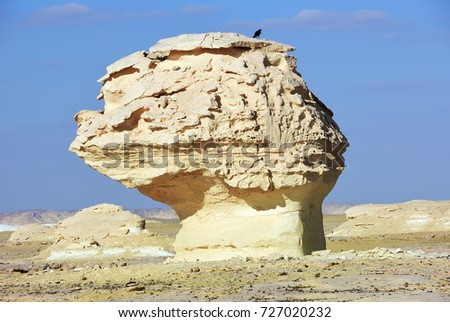 The limestone formation in White Desert at sunset, Sahara, Egypt