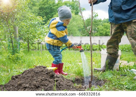 the little boy in the garden tree, little digs Planted tent pole for seedlings. on a sunny day