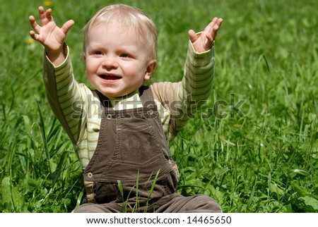 The little boy plays on a green grass - stock photo