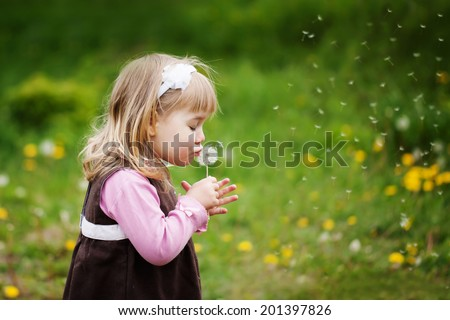 the little girl blows a dandelion