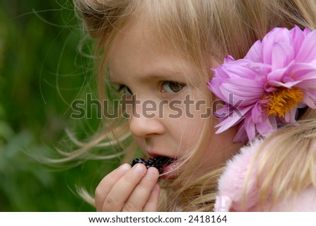 the little girl with a flower in hair eats a blackberry - stock photo