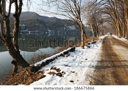 The long walk by the lake in winter at Nami Island, South Korea. - stock photo