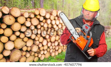 The Lumberjack working in a forest. Firewood as a renewable energy source. - stock photo