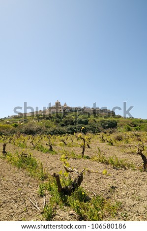 The majestic medieval city of Mdina (The city of Silence), Malta, framed by vineyards and a wonderful blue sky. - stock photo