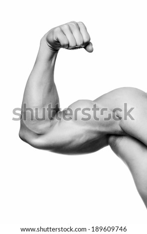 The male arm isolated on white background. - stock photo