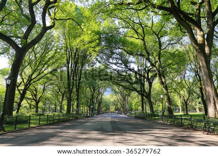 the mall at central park - stock photo
