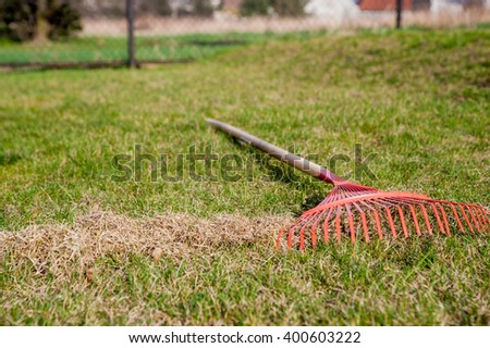 The man at the raking grass in the garden at springtime / raking the garden