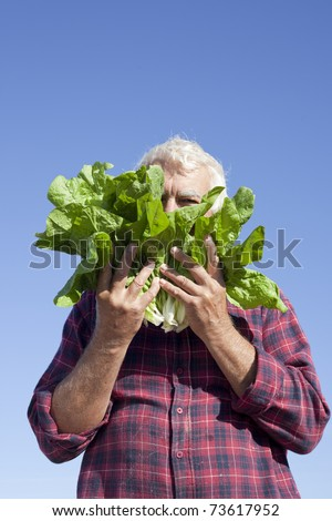 The man hiding his face under fresh lettuce. - stock photo
