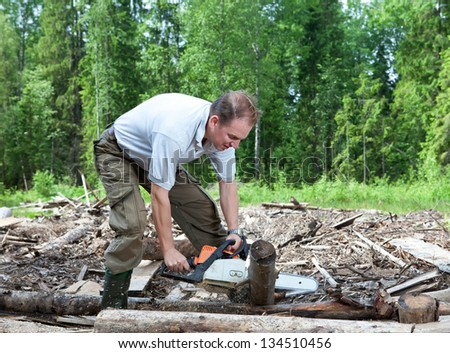 The man in wood saws a tree a chain saw - stock photo