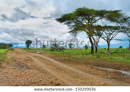 The  man on the road in the African savannah  - stock photo