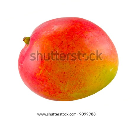 the mango fruit isolated with clipping path - stock photo