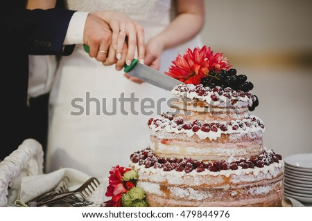 the married couple cut the wedding cake