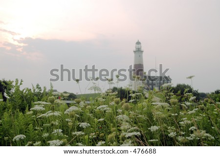 the montauk, new york lighthouse as the sunrises with flowers and one deer on the hill - stock photo