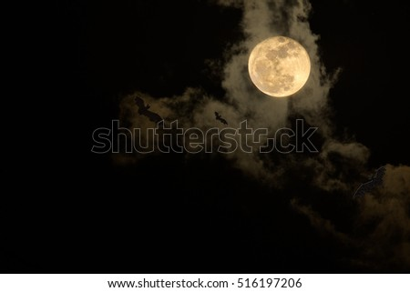 The moon and black cloud on the scary dark night / Select focus for background black space for text