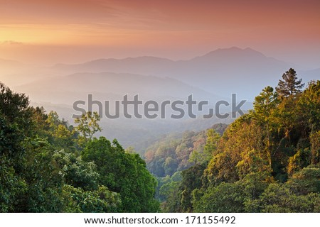 The morning sky and fog on the Tropical Mountain Range,Thailand
