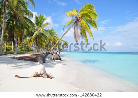 The most beautiful lonely beach in caribbean San Blas island, Panama. Turquoise tropical Sea, Palm Tree, Central America. - stock photo
