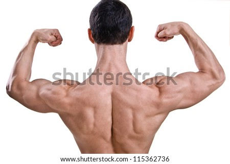 The muscular male back on white background. - stock photo