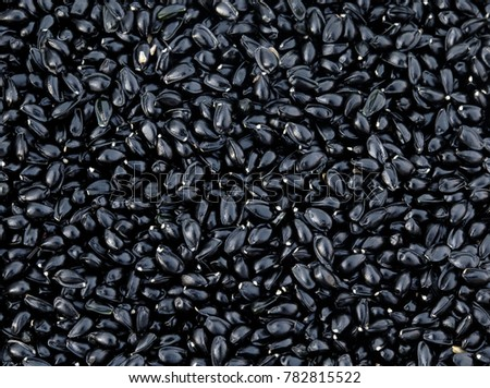 the natural backdrop of many small shiny black seeds
