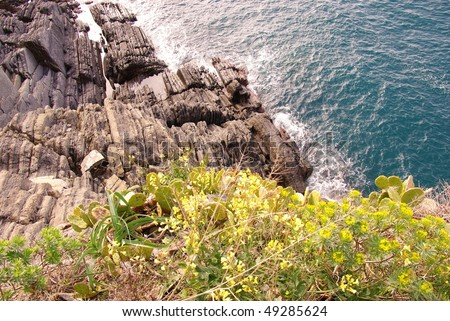 The nature of the national park Cinque Terre in Italy - stock photo