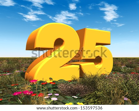 The Number 25 Computer generated 3D illustration - stock photo