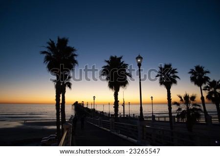 The numerous palms of Southern California's coast are silhouetted against the final light of the day. - stock photo