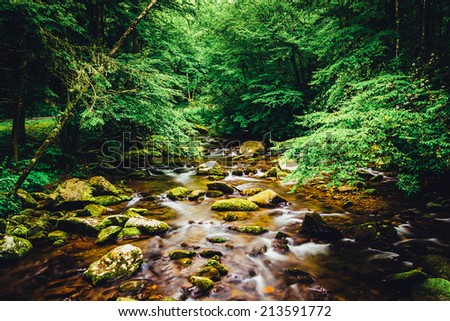 The Oconaluftee River, at Great Smoky Mountains National Park, North Carolina. - stock photo