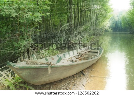 the old boat in mangroves forest - stock photo