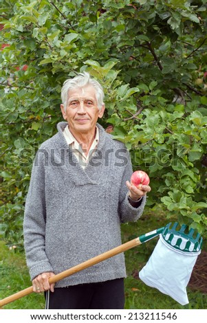 the old gardener at the Apple in the garden