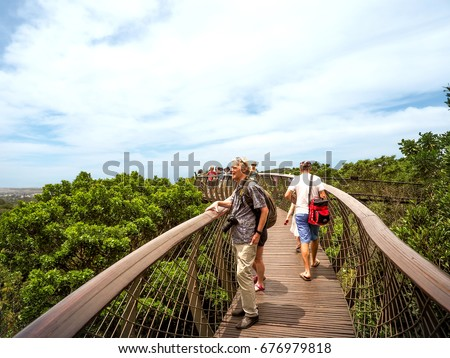 The old man and tourists walk in Tree Canopy Walkway of Kirstenbosch National Botanical Garden is & Old Man Tourists Walk Tree Canopy Stock Photo 676979818 - Shutterstock