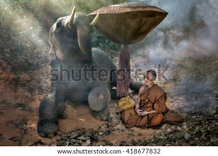 The old monk  meditating with a young elephant in the forest. - stock photo