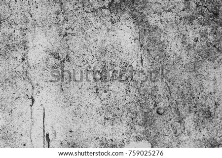 The old,white, grey grunge concrete texture or background. Copy space. graphical resource