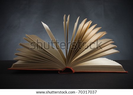 The open book on a black background - stock photo