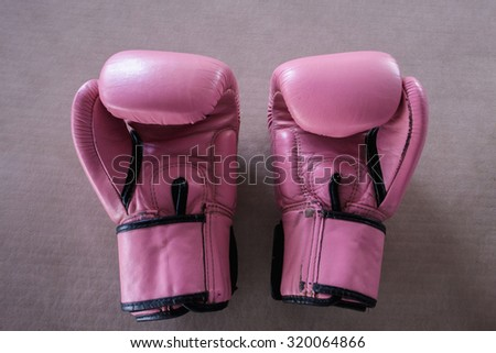 The pair of pink boxing gloves on pink background - stock photo