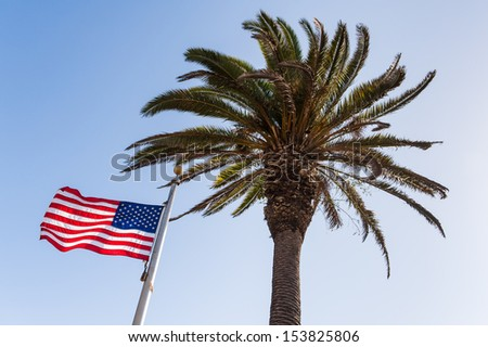 The palm tree and the american flag under the blue sky - stock photo