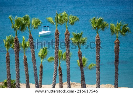 The palm trees in the foreground pop out of the picture as the Mediterranean Sea and the boat in the background is relaxingly blurred. Protaras, Cyprus. - stock photo