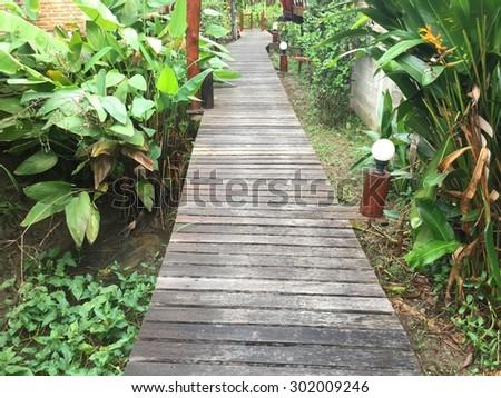 The park walkway. - stock photo