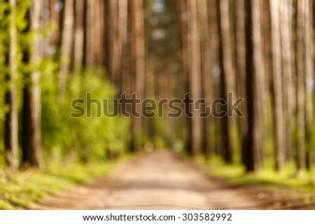 The path in the woods. Wonderful nature, fresh air, sunlight. Great place for a morning walk. - stock photo