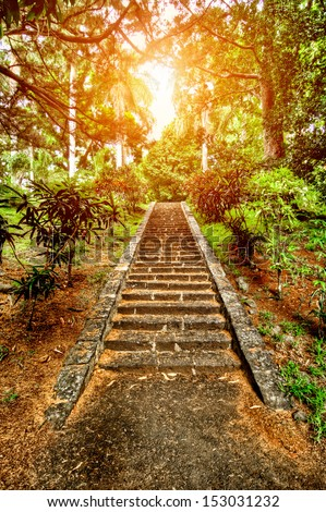 the path to enlightenment  - stock photo