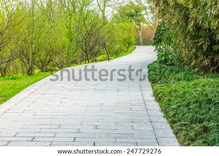 The pavement way in a garden