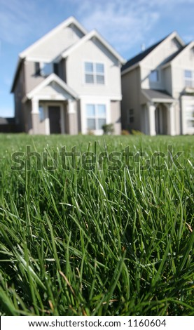 The Perfect Lawn - stock photo