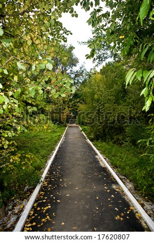 The picture is made during walk on a botanical garden - stock photo