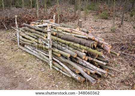The pile of chopped wood in the forest