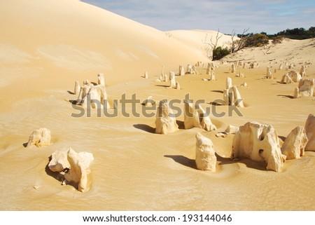 The Pinnacles Desert - stock photo