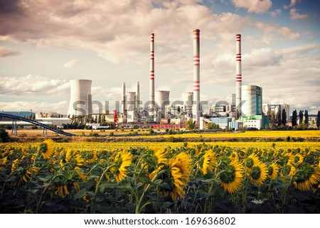 the power station Pocerada with sunflower field - stock photo