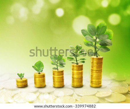 The process of growth of income in the form of the germ, as graphics - stock photo