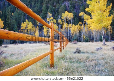 The Property Line - stock photo