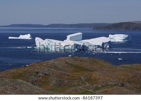 The Pumley Cove Trail and icebergs in Goose Cove, Newfoundland, Canada.