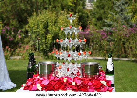 the pyramid of champagne glasses . Outdoors, with strawberries and rose petals.