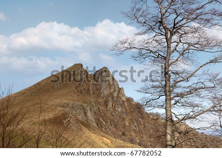 The pyrenees mountains in France at the Iraty forest near the border of Spain - stock photo